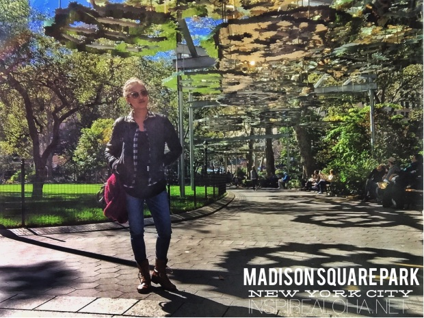 New York Stops: Central, Madison Square, and Battery Park